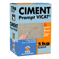 PRB CIMENT PROMPT VICAT 1 KG